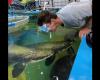 【予想外】魚に餌をやろうとする男、このあと衝撃的な事態に。。