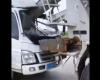 【デッドコースター】ミキサー車に頭を潰された後続車のドライバー